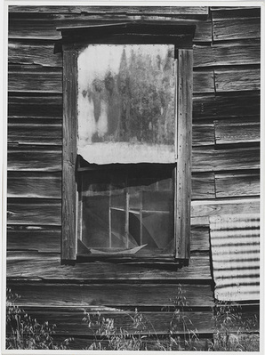 Ansel Adams: Window, Bear Valley, California. 1973, Polaroid Type 55 Gelatin silver print 9.8 � 13.3