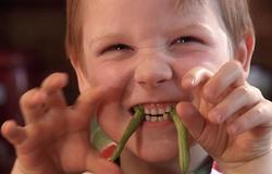 Ein Junge hat sich Bohnen in die Mundwinkel gesteckt und ahmt einen Vampir nach.; Rechte: WDR