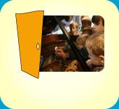 Klavierbauer / 20095 Hamburg