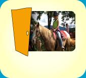 Pony-Hof / 79199 Kirchzarten