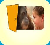 Zoo/ 45889 Gelsenkirchen