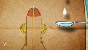 Mein Körper: Sperma - Teelöffel; Rechte: WDR 2012