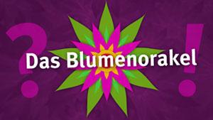 Blumenorakel klein; Rechte: WDR 2013